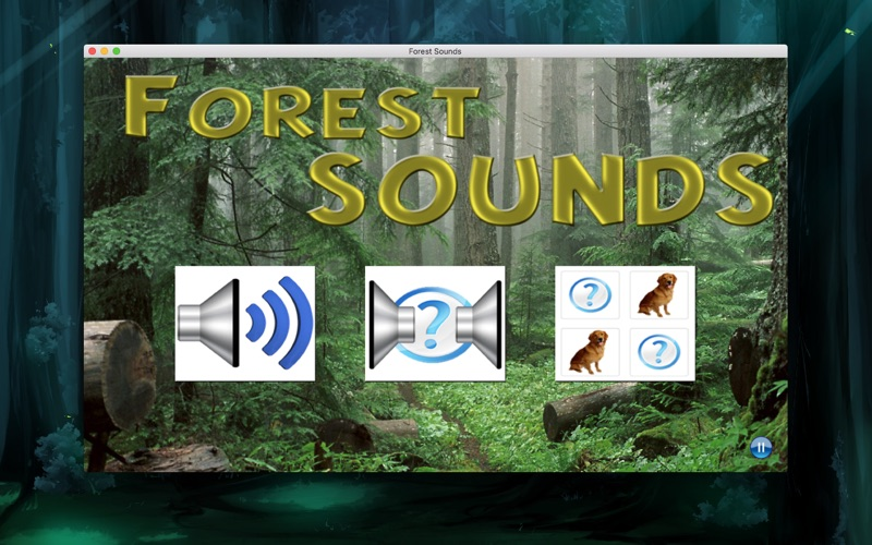 Forest Sounds | App Price Drops
