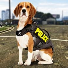 Activities of Police Dog Simulator