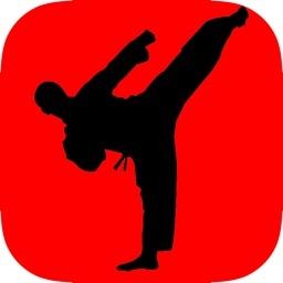Learn Karate - Beginner's Guide
