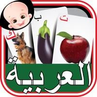 Codes for Kids Arabic Alif Baa Ta Huruf Flash Cards Hack