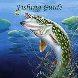 Fishing Guide - Become Fishing Kings