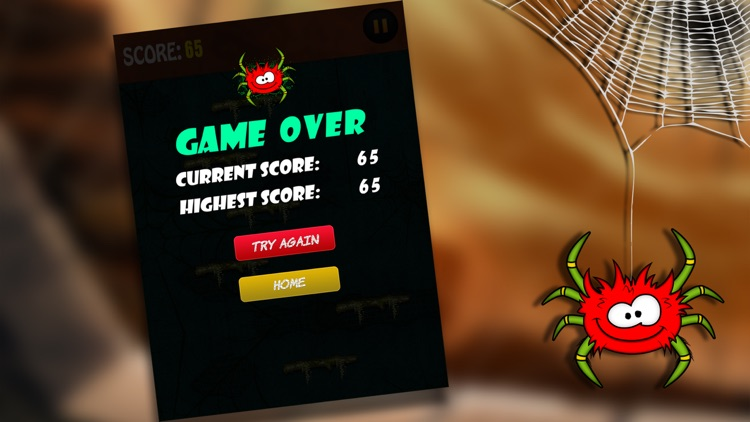 Itsy Bitsy Spider Game - Help Incy Wincy Up The Wall screenshot-3
