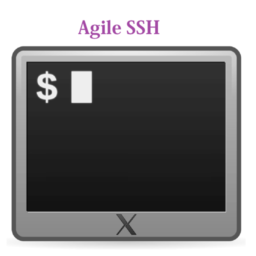 Agile SSH Client - GUI for SSH which support public/private keys authentication and multiple windows sessions