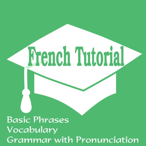 French Tutorial: Basic Phrases, Vocabulary and Grammar with Pronunciation