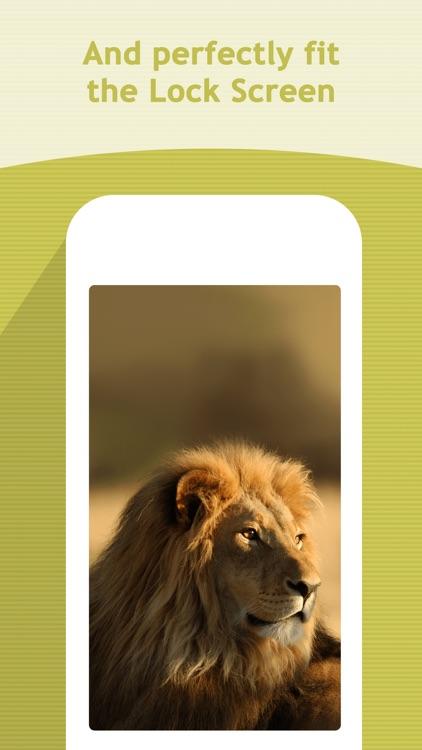 HDScreen - Beautiful Retina Wallpapers Backgrounds screenshot-3