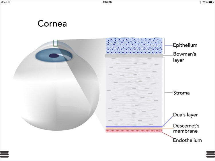 Ophthalmic Media Library screenshot-3