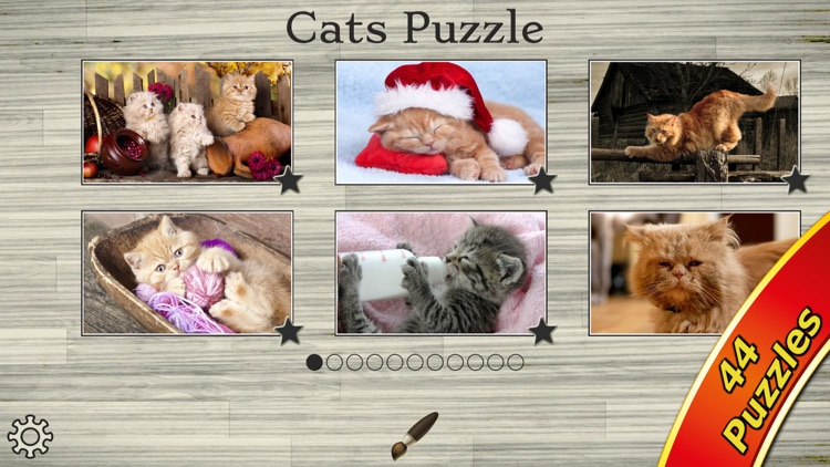 Cute Cats - Real Cat and Kitten Picture Jigsaw Puzzles Games for Kids screenshot-4