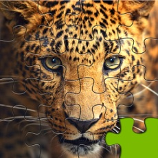 Activities of Big Cats Puzzle 4 Kids Endless Jigsaw-Adventure