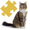 Cats - Jigsaw Puzzles Reviews