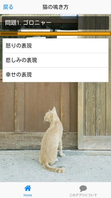 猫の気持ち「わかるかニャ?」紹介画像2