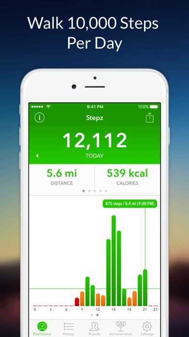 Stepz - Step Counter Screenshot