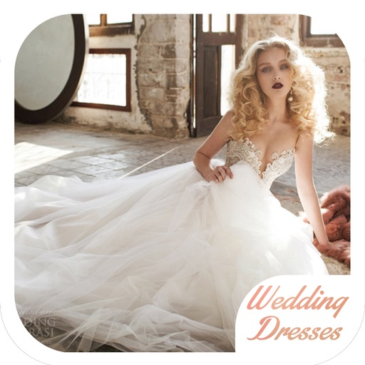 Wedding Dress and Gown Ideas for iPad