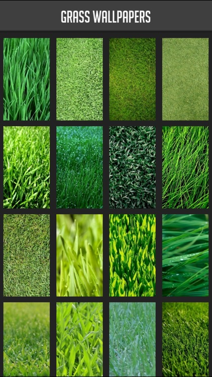 Grass Wallpapers