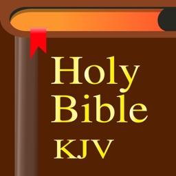 Bible-Simple Bible Advance (KJV) - Lite