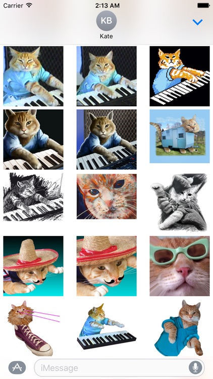 Keyboard Cat Stickers! screenshot-3
