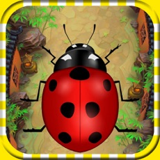 Activities of Running Bug : Survive in The Jungle Race