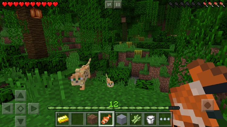Minecraft: Pocket Edition app image