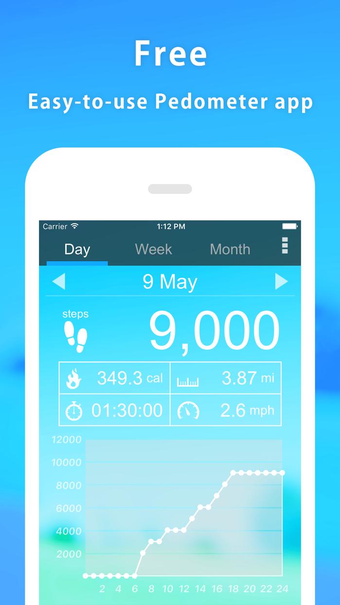 Pedometer α Screenshot