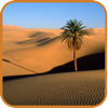 Largest Deserts