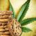 Weed Cookbook 2 - Medical Marijuana Recipes & Cook