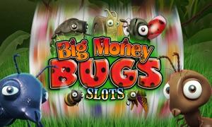 Big Money Bugs Slots TV