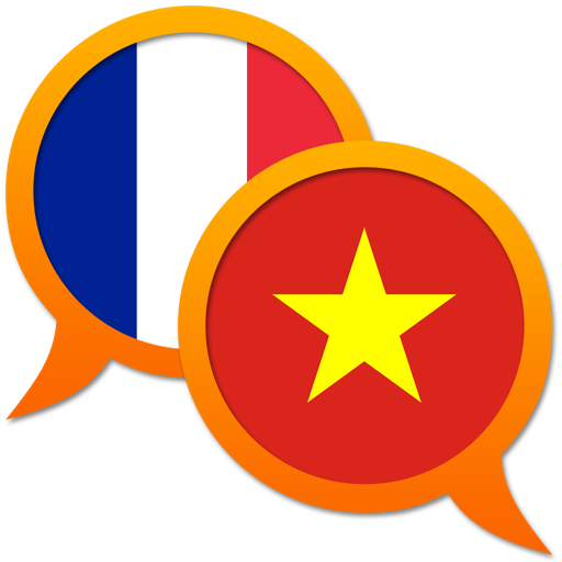 French Vietnamese dictionary