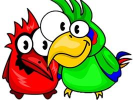 Crazy Bird Stickers