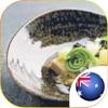 美食厨房之澳洲海鲜美食大全 - 澳大利亚美食地图