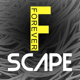 ForeverScape Art with Hidden Objects