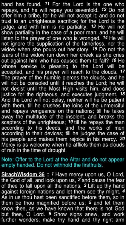 Summary Old Testament Apocrypha (Part 3) screenshot-3