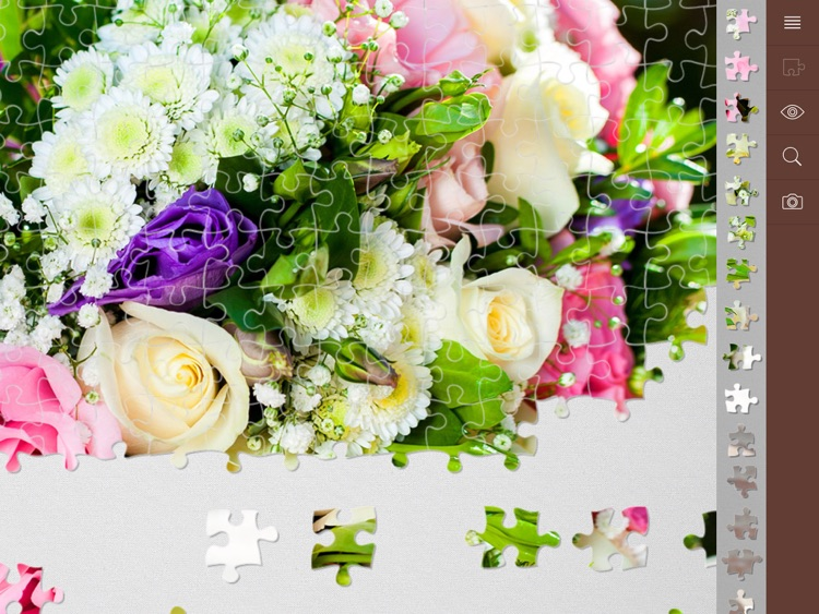 Jigsaw Puzzle Plus screenshot-3