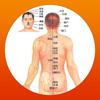 人人易诊心率监测护士护理学HD 辅食治疗腰间盘突出肾虚肠胃轻盈医学