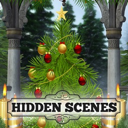 Hidden Scenes Christmas Colors