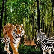 愤怒的豹子多人游戏AI-A模拟游戏