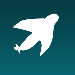 iSpeedy - Flights Hotels & Car Hire