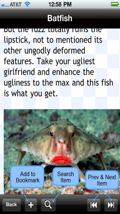 Weirdest Sea Creatures
