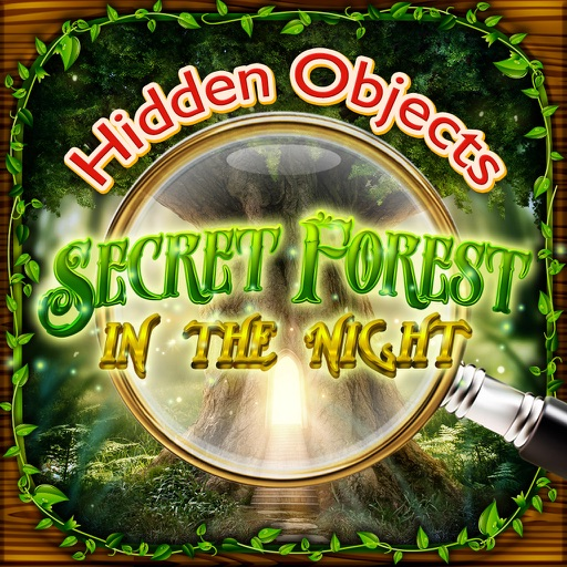 Hidden Objects Secret Forest in the Night Games