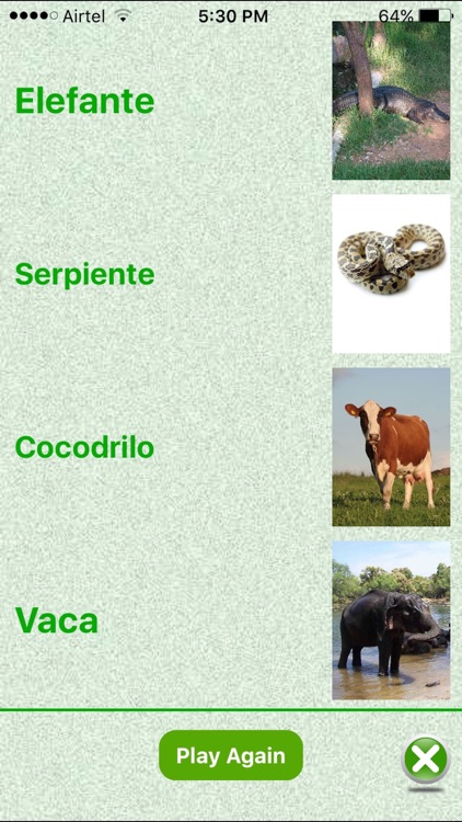 Flashcards Spanish Lesson screenshot-4