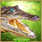 Crocodile Simulator 2017 3D icon