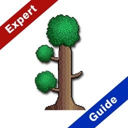 Expert Guide  For Terraria 2016