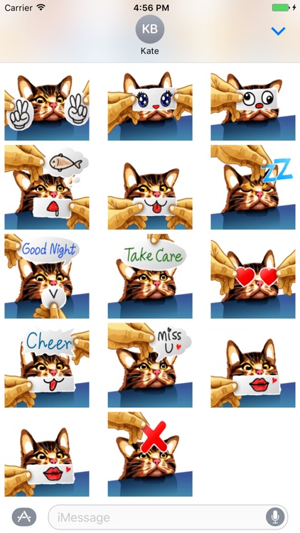 Meme Cat Sticker screenshot-0