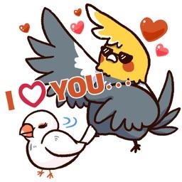 Cheeky Parrot2 - iMessage Sticker