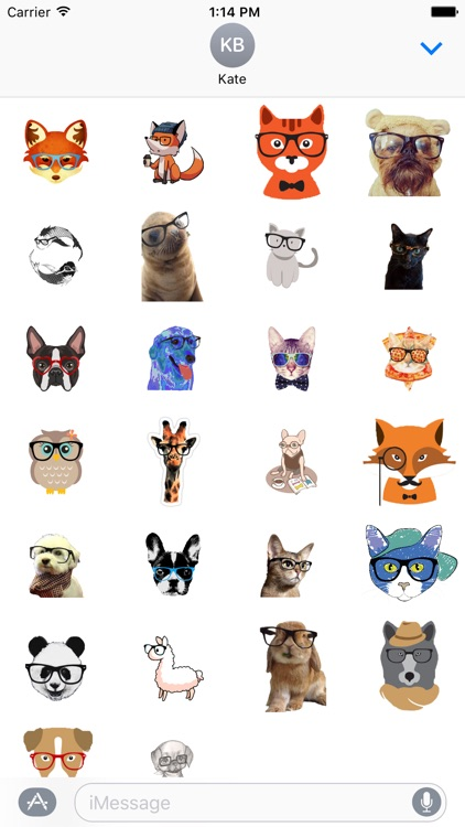 Animals Wearing Glasses