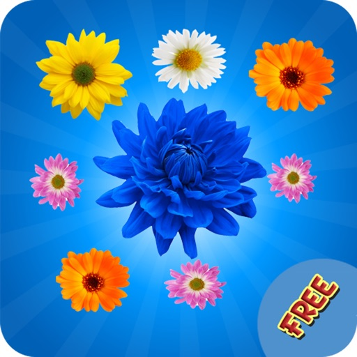Blossom Garden Mania Blossom Game by Truong Nguyen