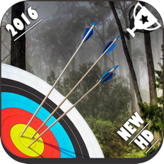 Activities of Archery Master 3D Cup