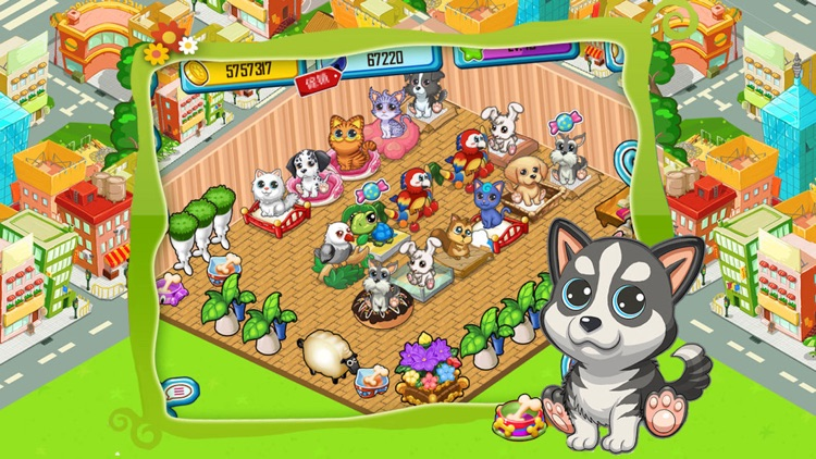Pet Home screenshot-2