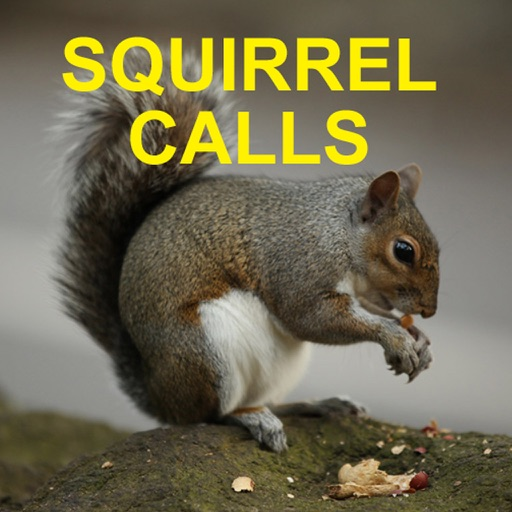 Squirrel Hunting Calls HD