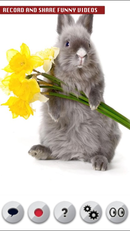 A Talking Easter Bunny