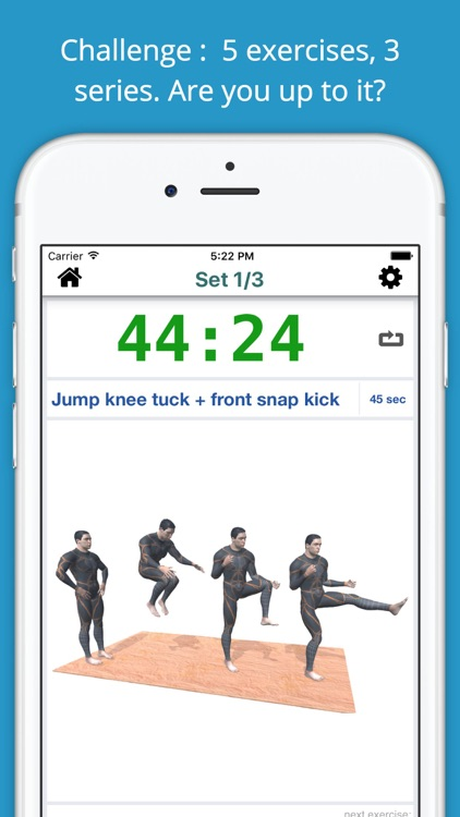 Fist of Fury Martial Arts Workout Challenge Free