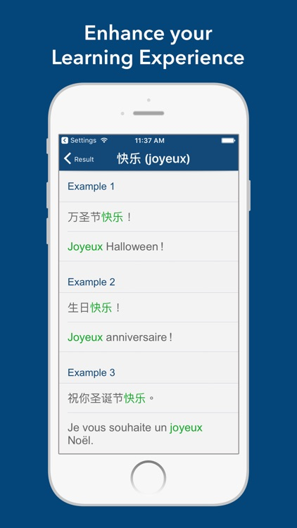 Chinese French Dictionary 法中字典 screenshot-3